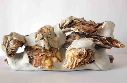 Take one pint of oysters – the naturally disposed